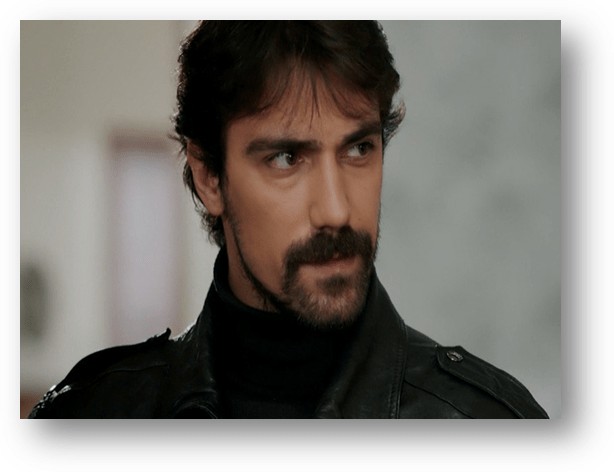 Read more about the article IBRAHIM CELIKKOL, Turkish actor